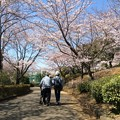 写真: 父と母