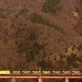 写真: 冬至の日 ~秩父鉄道~ 4カット