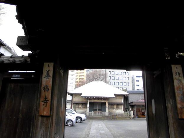 写真: 善福寺-01山門a(1-4)