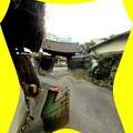 写真: 善福寺-01山門a(4)