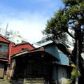写真: 善福寺-05