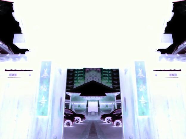 善福寺-01山門a(1-4h)
