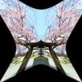 写真: 聖蹟公園(品川宿本陣跡)-03