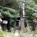 写真: 太陽稲荷神社-02