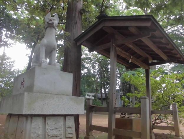 宇山稲荷神社-05神使 & 手水舎