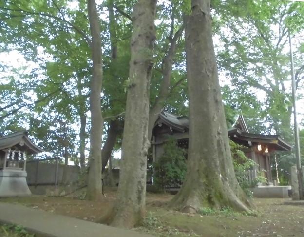 宇山稲荷神社-08境内社・拝殿