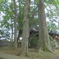 Photos: 宇山稲荷神社-08境内社・拝殿
