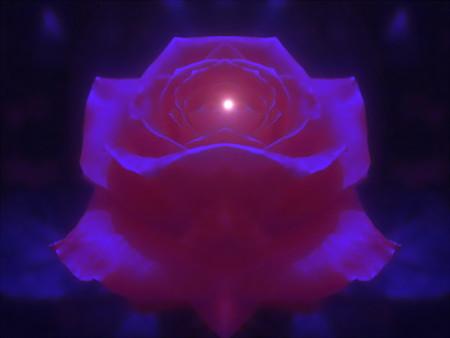 夜に咲く花-02b