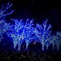 写真: 夜景_渋谷-02