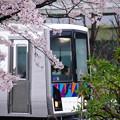 写真: 横浜シーサイドライン