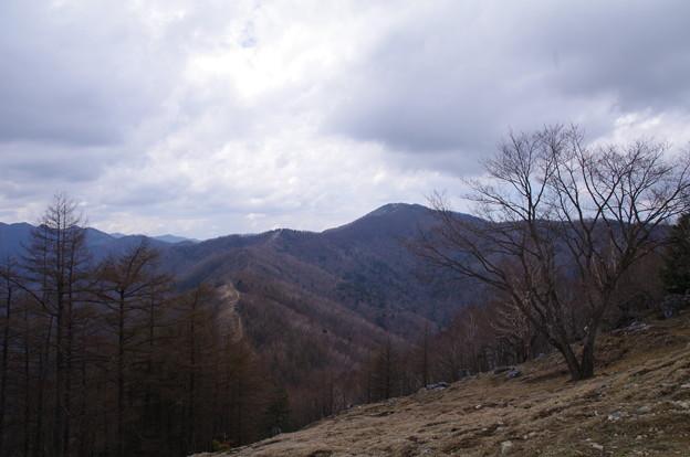 小雲取山と雲取山