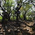 写真: 万二郎岳(標高1299m)