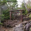八合目滝尾神社の鳥居