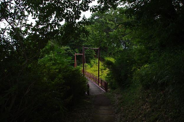織姫公園の吊り橋