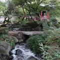 清渓亭と渓流