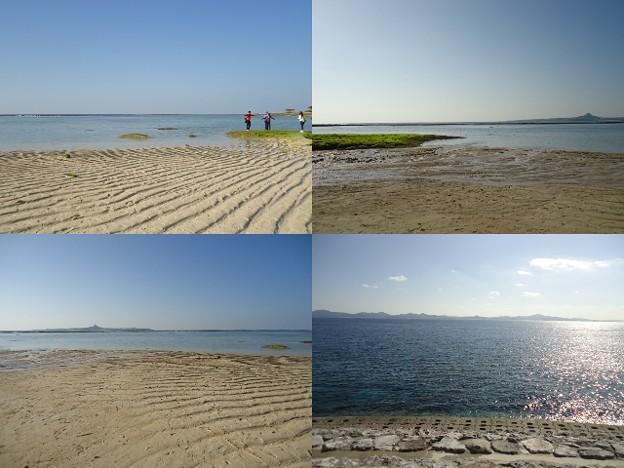 写真: 美ら海