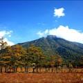 写真: 戦場ヶ原から見た何山?