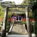 Photos: 高鴨神社02