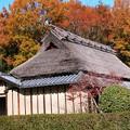 里の晩秋風景10
