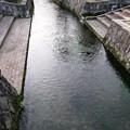 針江の生水08