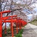 写真: 丸高稲荷神社04