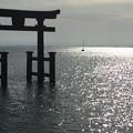 Photos: 湖上の大鳥居:白鬚神社13