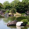 写真: 池泉