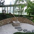 和らぎの庭:都会オアシス15