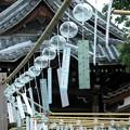 写真: ラインダンス:風鈴まつり10