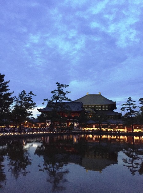 写真: 東大寺鏡池:奈良燈火絵01