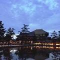 東大寺鏡池:奈良燈火絵01