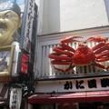 写真: 名物看板:大阪周遊96