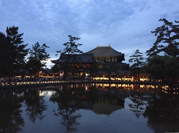 東大寺鏡池:奈良燈火絵02