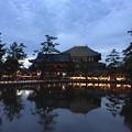 写真: 東大寺鏡池:奈良燈火絵02