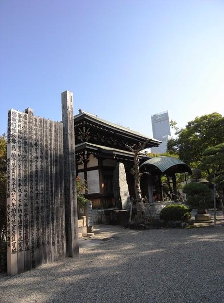 Photos: あべのハルカス:天王寺散策05