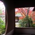 写真: 紅葉フレーム:晩秋好古園107