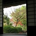 写真: 里山晩秋22
