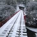 写真: 橋梁:雪国ローカル線05