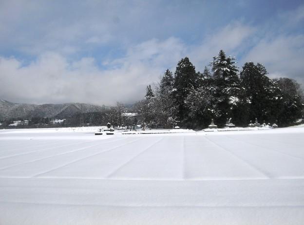 写真: 越美北線車窓風景:雪国ローカル線15