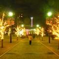 Photos: ☆イルミ45th 横浜アメリカ山公園♪
