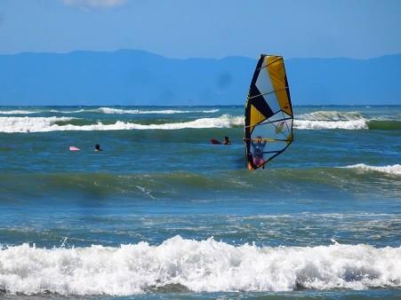 逗子海岸~ウインドサーフィン