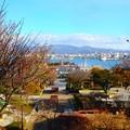 写真: 函館元町公園から^^