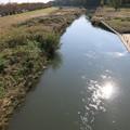 晩秋の新河岸川