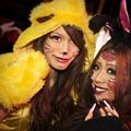 Photos: 兎と虎猫