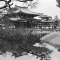 京都平等院鳳凰堂