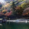 写真: 保津川遊船