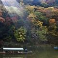Photos: 光灑嵐山
