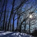 Photos: 冬季烈日