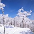Photos: 201412271209SAT_OomineShakagatake_05