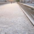 初雪の朝 01